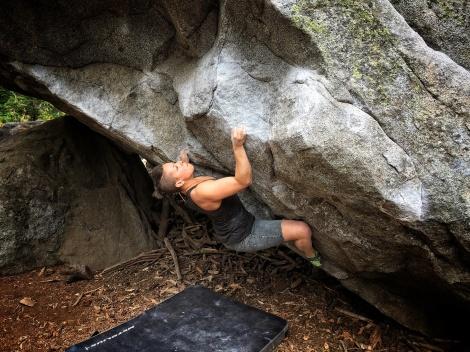 climbing bio pic